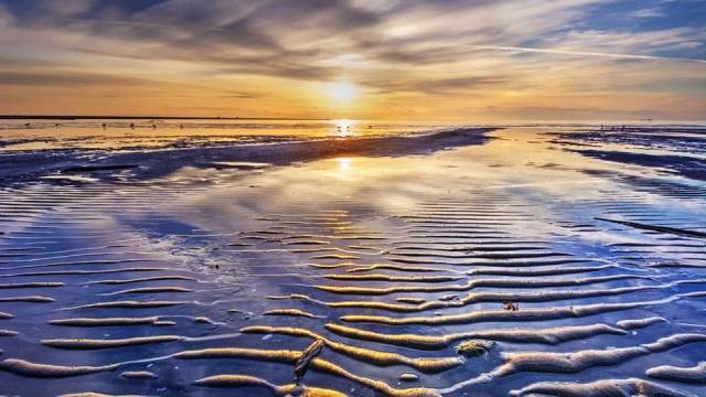 coastal tides