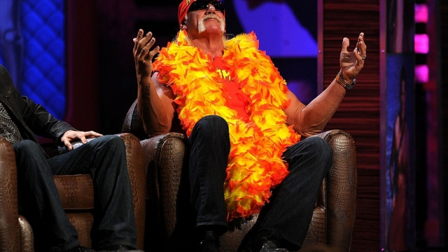 Hulk Hogan's lawsuit against Gawker was funded by billionaire Peter Thiel