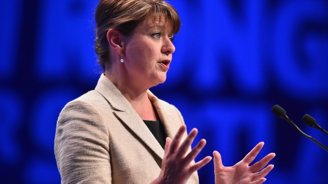 Plaid Cymru's leader Leanne Wood (Photo: Getty)