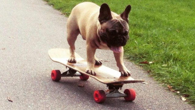 Four wheels good: Eric on his skateboard (Photo: Claire Maclean)