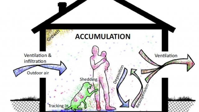 This image shows the sources and physical processes that govern assembly of indoor microbial communities. (CREDIT: Peccia and Kwan/Trends in Microbiology 2016)