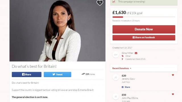 Gina Miller's 'Do what's best for Britain!' crowdfunding page