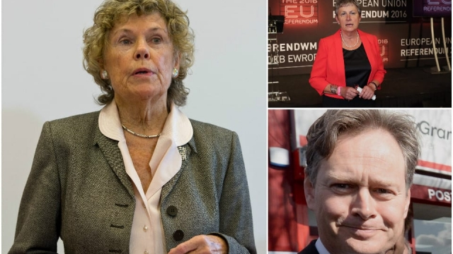 Kate Hoey, Gisela Stuart and Matthew Offord all backed Leave but their constituencies supported Remain