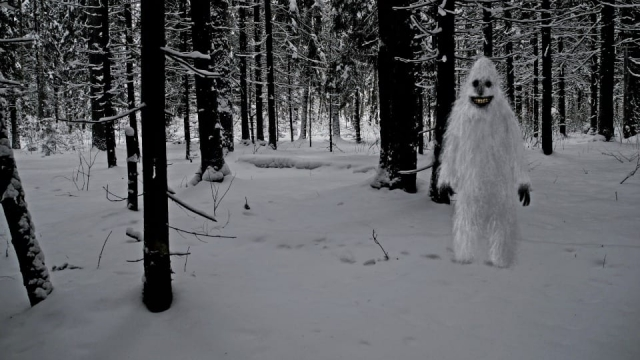 This Paranormal Life investigates unusual supernatural tales such as Bigfoot (Photo: Shutterstock)
