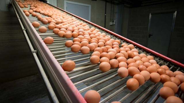 Eggs could be about to get more expensive