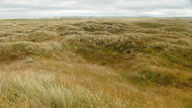 The National Trust is objecting to the plans for Coul Links in Sutherland (Photo: Mark Foxwell)