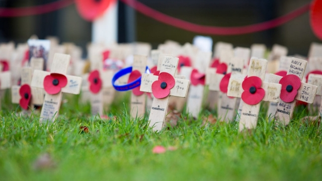 There's more to the poppy appeal than the First World War