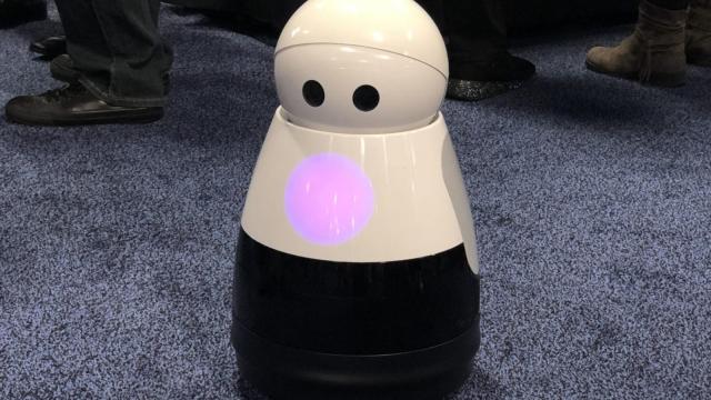 Kuri the robot - sweet but strange (Photo: i)
