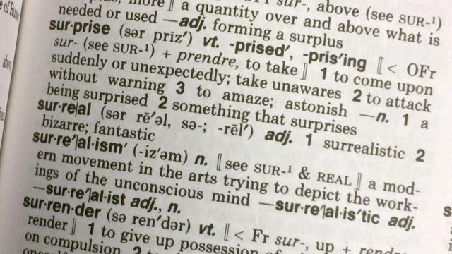 Susie Dent: Before we add new words to the dictionary, let us consider the ones we've already got (KAREN BLEIER/AFP/Getty Images)