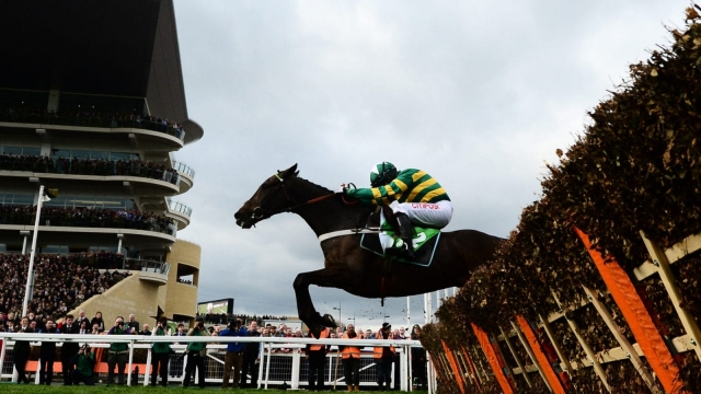 Buveur d'Air is odds-on favourite to win his second Champion Hurdle at Cheltenham on Tuesday (Getty Images)