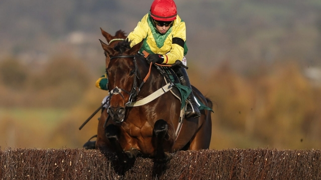 Jon Freeman believes Finian's Oscar could be one of the best bets at the Cheltenham Festival this week (Getty Images)
