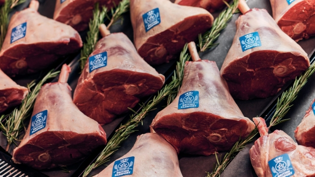 """Morrisons, perhaps not confident that the promise of British lamb will be enough to entice customers through its doors, has decided to issue each of its joints with a blue """"passport"""" in order to make their origin clear (Photo: Mikael Buck/Morrisons)"""