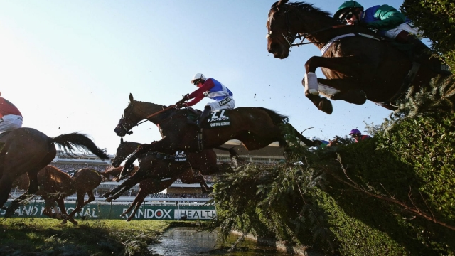 Experts fear sports like the Grand National could be curtailed by Brexit (Photo by Alex Livesey/Getty Images)