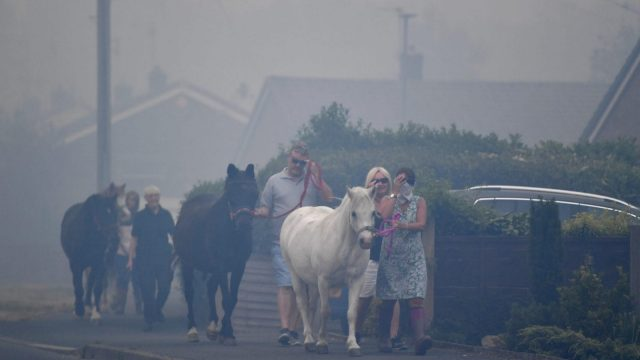 Horses are moved through heavy smoke in Carrbrook where residents are being evacuated as a large wildfire sweeps across the moors between Dovestones and Buckton Vale in Stalybridge, Greater Manchester on June 26, 2018 in Stalybridge, England. (Photo by Anthony Devlin/Getty Images)