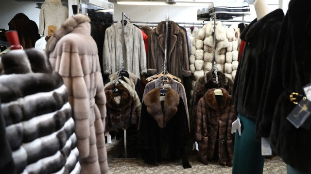 Fur coats displayed for sale in the US (Photo: Getty)