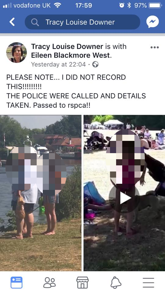 Two videos allegedly showing a pug type dog being abused have been removed (Photo: Facebook)