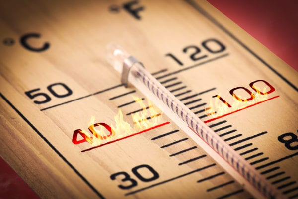 The Met Office have recently confirmed that last year was the fifth warmest for the UK in records which date back more than a century (Photo: Shutterstock)