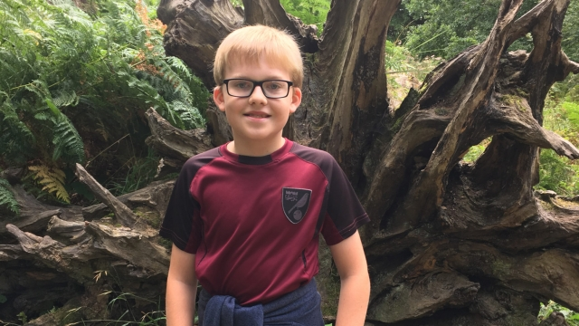 Daniel Jillings 12, communicates using British Sign Language (BSL) and wants the Government to introduce a GCSE in the subject as soon as possible (Photo: Ann Jillings)