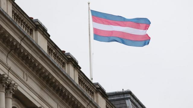 Transgender pride flag (Flickr)