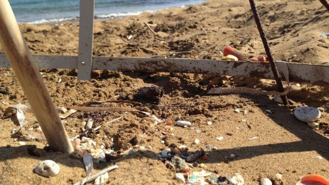 Article thumbnail: Plastic debris was found on the surface and deep down in the beach's sand in Cyprus (Photo: Jessica Arrowsmith)