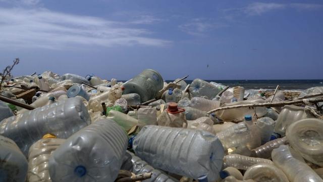 Plastic litters a beach. (Photo: Joseph Eid/AFP/Getty Images)