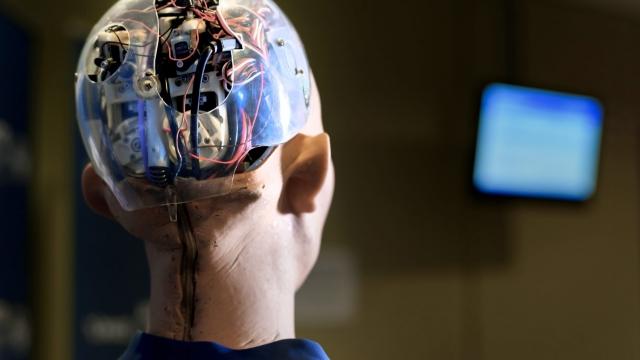 'Sophia' an artificially intelligent human-like robot developed by Hong Kong-based humanoid robotics company Hanson Robotics. Photo: Fabrice Coffrini/ AFP/ Getty