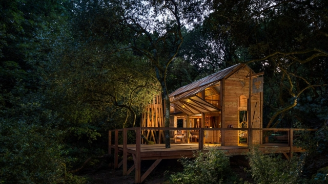 The Carlsberg cabin in the woods sleeps six.