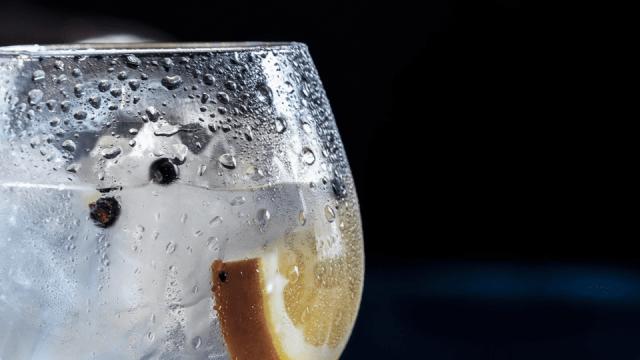 best gins 2018
