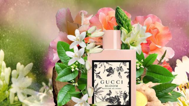 best women's fragrances for winter 2018