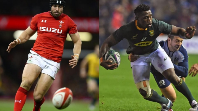 Wales will take on South Africa at the Principality in Cardiff on Saturday
