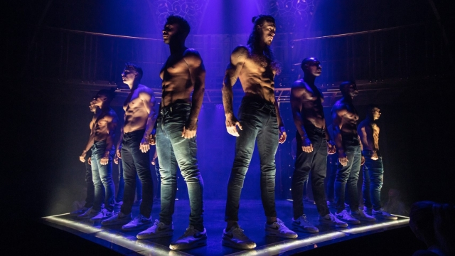The cast of Magic Mike Live. Photo: Trevor Leighton