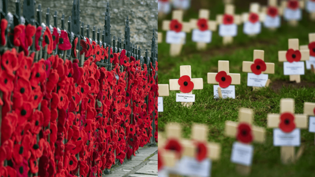 Where to see Remembrance Day displays in the UK (PA)