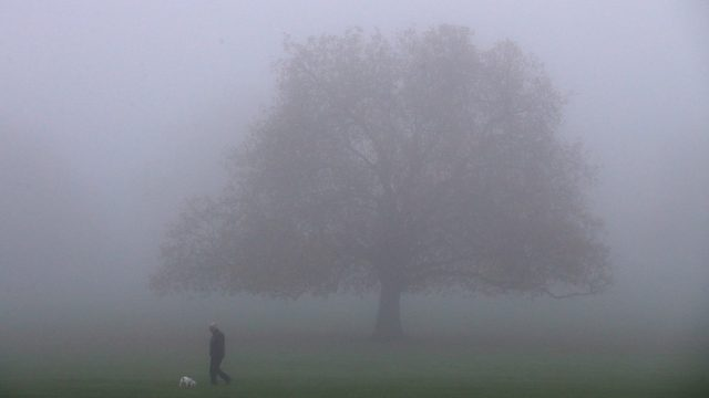 LONDON, ENGLAND - NOVEMBER 02: A man and his dog walk through a Peckham park in thick fog on November 2, 2015 in London, England. Thick fog has covered much of the UK causing travel disruption with dozens of flights being cancelled at airport across the country. (Photo by Dan Kitwood/Getty Images)