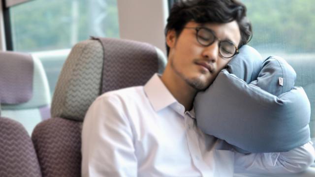 15 Versatile Travel Pillows