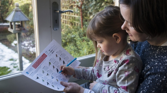 Mother and her daughter counting birds in their garden, Bedford, UK, January. (Photo: RSPB)