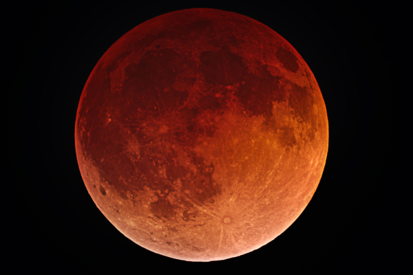The moon turned a spectacular shade of red as it was plunged into the Earth's shadow (Photo: Shutterstock)