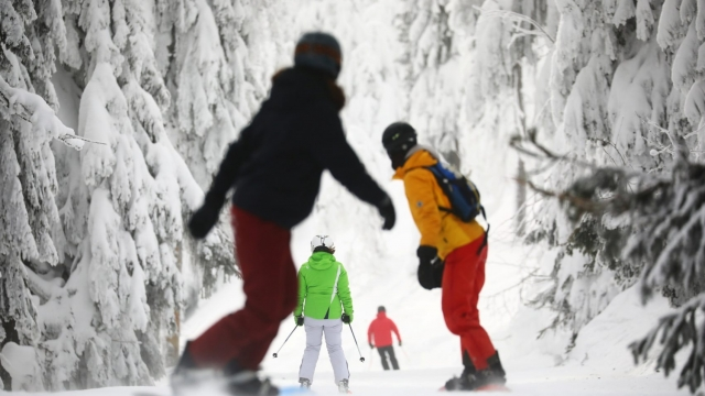 Are skiers and snowboarders like these taking a risk of being chased for thousands of pounds if they collide? (Photo: REUTERS/Hannibal Hanschke)