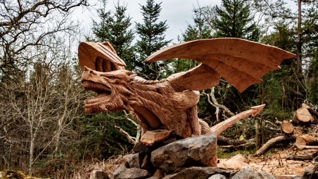 The dragon, named Y Draig Dderw, looms out of the trees (Photo: Simon O'Rourke Tree Carving/PA Wire)