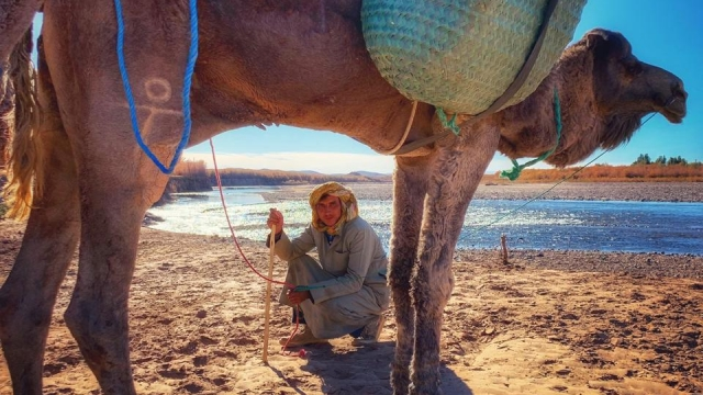 Alice Morrison is trekking the 1,200km Draa River with three companions and camels (Photo: Alice Morrison)