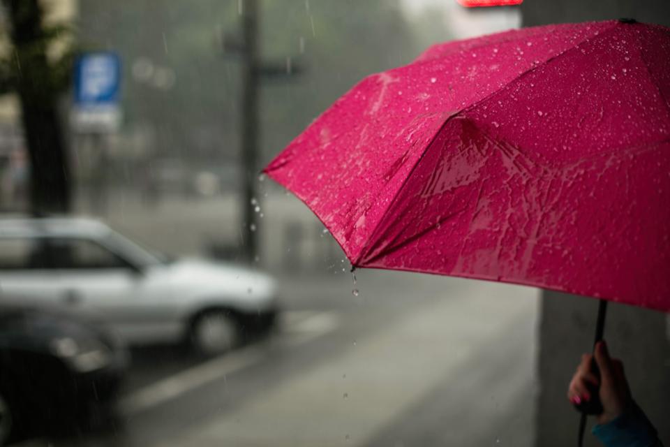 Navy by Doppler London Umbrella Mens Windproof Umbrella