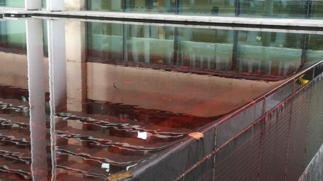 Pond at the Home Office filled with blood. This is the consequence of our immigration policies' (Twitter/@putdownthesword)
