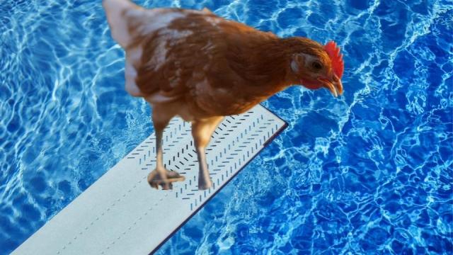 Chlorine chicken isn't good