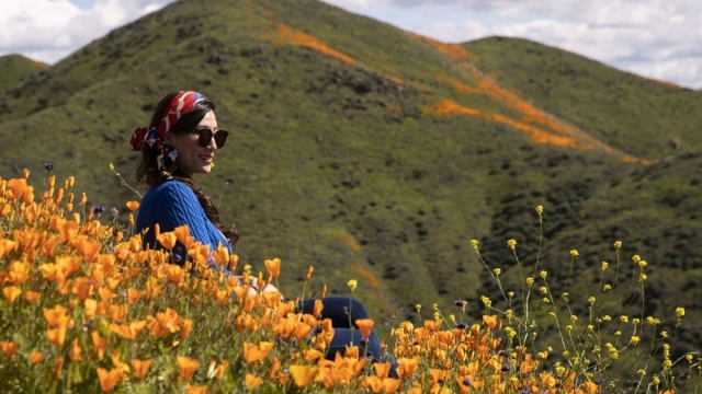 A woman poses among poppies in bloom on the hills of Walker Canyon in Lake Elsinore, California, on March 8, 2019. (Photo by Maro SIRANOSIAN / AFP) (Photo credit should read MARO SIRANOSIAN/AFP/Getty Images)