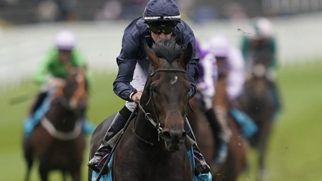 Sir Dragonet is the favourite for Saturday's Investec Derby at Epsom (Getty Images)