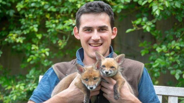Farmer saved foxes