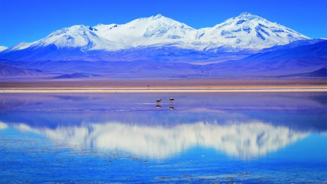 Volcano Tres Cruzes at the Laguna Rosa in the Atacama Desert (Photo: Adrian Rohnfelder)