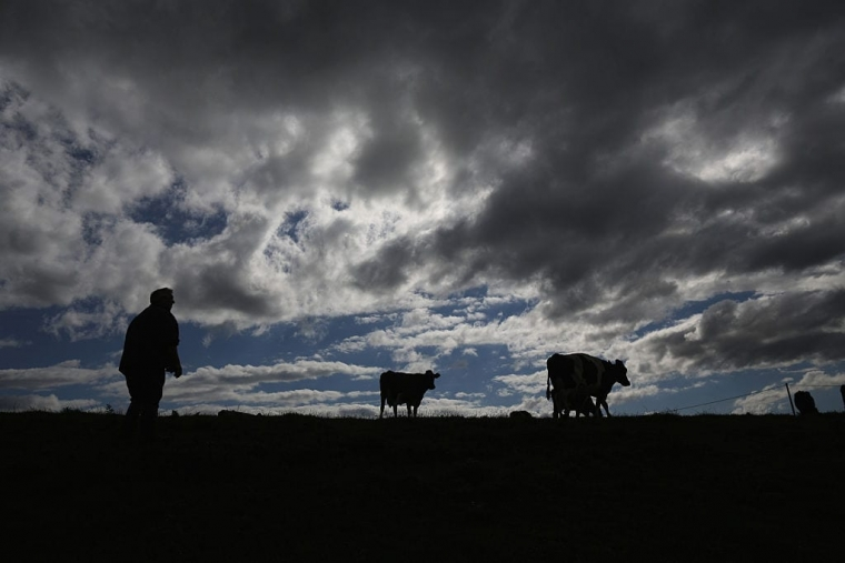 British beef has been banned since 1996 (Photo: Christopher Furlong / Getty)