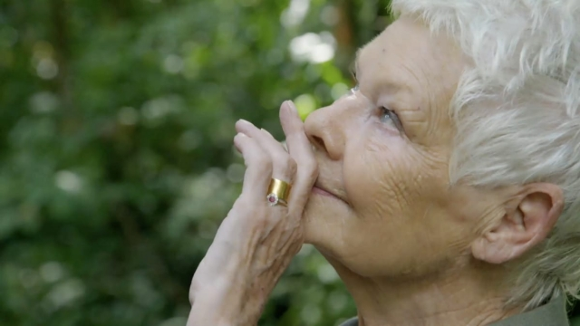 Judi Dench looks up in the Borneo rain forest and sees her first wild Orangutang high in the canopy (Photo: Atlantic Productions)