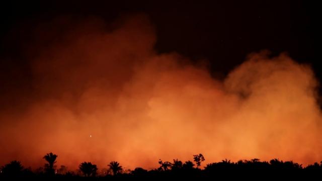 Smoke billows from a fire in the Amazon rainforest near Humaita, Amazonas State (Photo: Ueslei Marcelino)