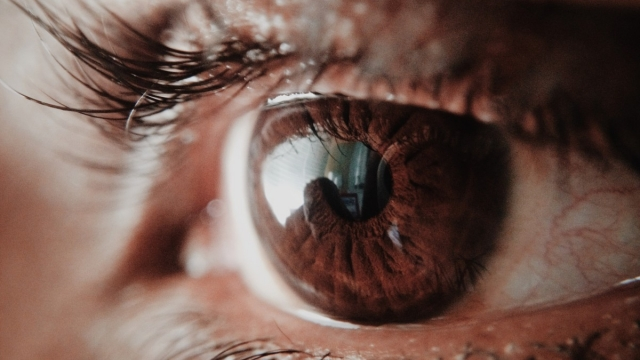 Lying? Your eyes might be giving you away (Photo: Pexels)